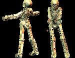 Spooky Skeleton 03 PNG Stock