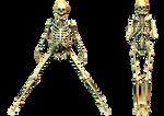Spooky Skeleton 04 PNG Stock