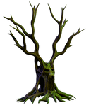 Spooky Tree 06 PNG Stock