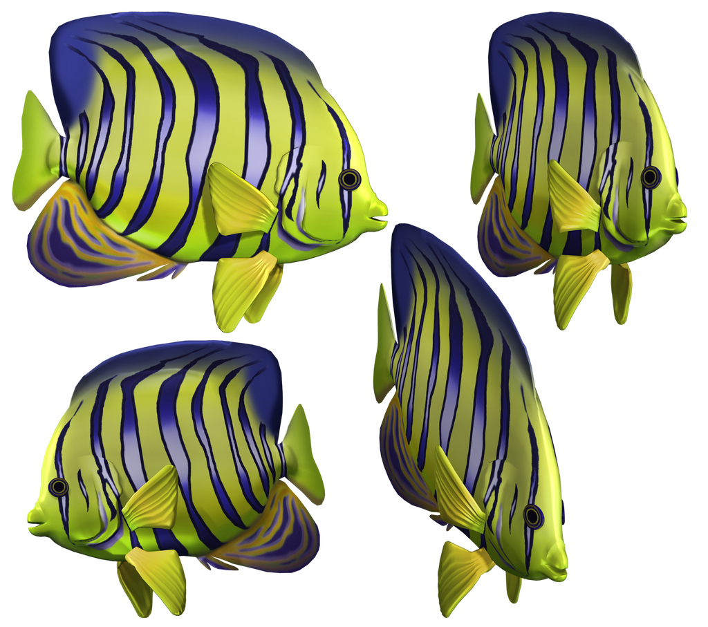 Angel Fish PNG Stock by Roy3D on DeviantArt