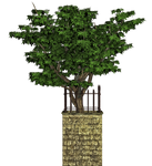 Tree And Base PNG Stock