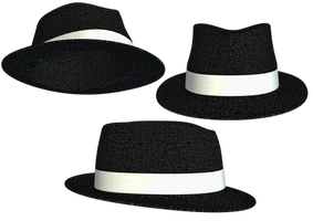 Hat Collection 11 PNG Stock by Roy3D