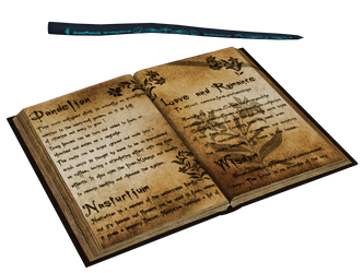 Spell Book And Wand PNG Stock by Roy3D