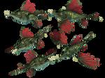 Dragon Fish PNG Stock