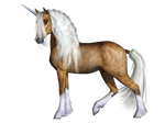 Unicorn 03 PNG Stock