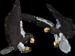 Sea Eagle 01 PNG Stock