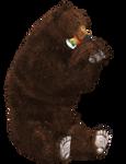 Brown Bear 04 PNG Stock