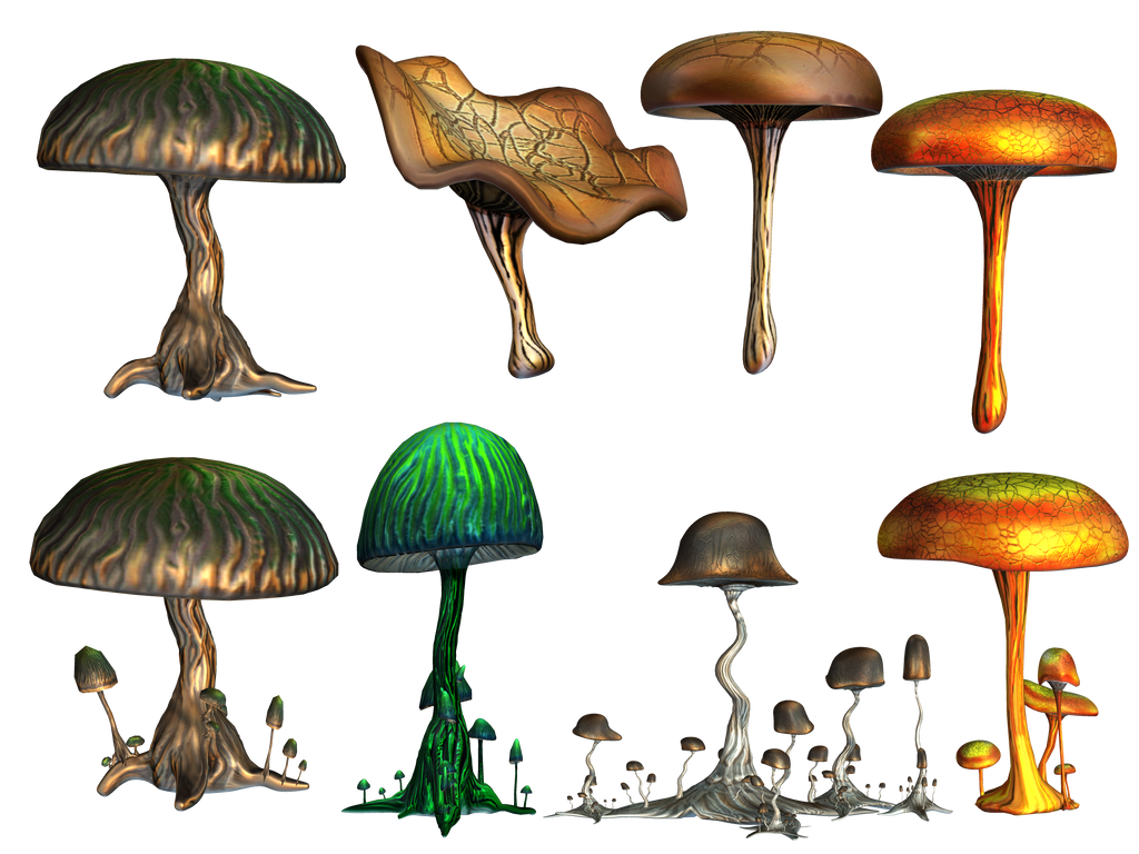 Mushrooms PNG Stock