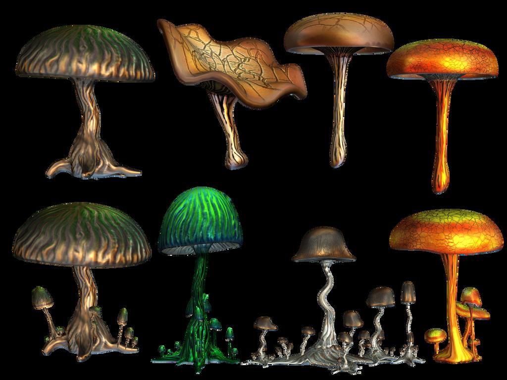 Mushrooms PNG Stock