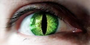 Eyeball morph