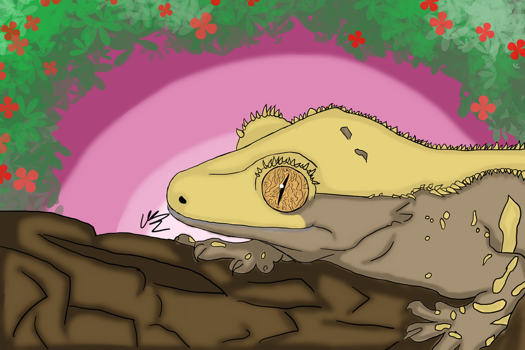 My Crested Gecko Tiny by WorldOfAndromeda