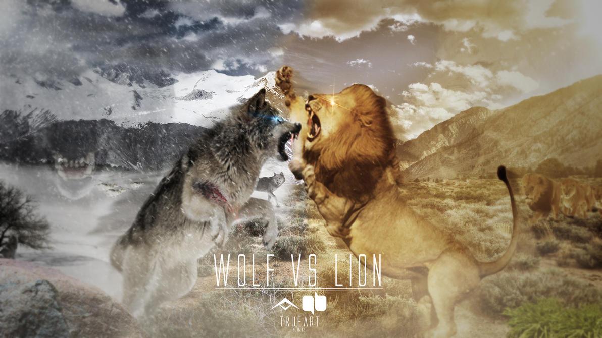 wolf vs wolf
