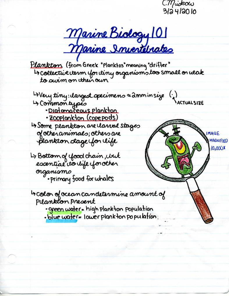Marine biology homework help