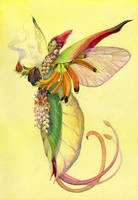 Tropical Pixie by neshad