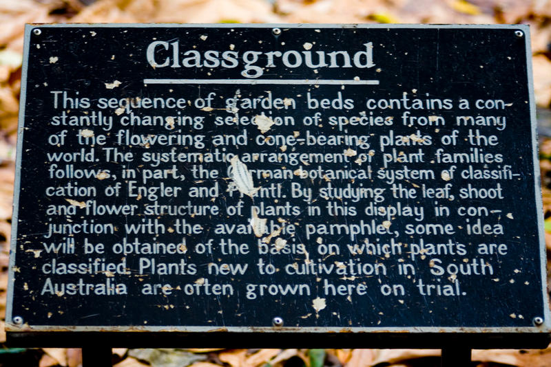 Classground