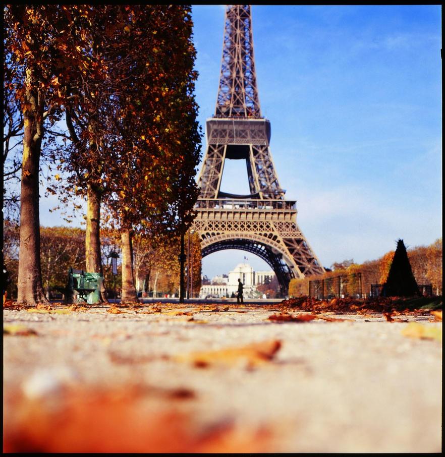 Цветной встречает осень в Париже рекомендации