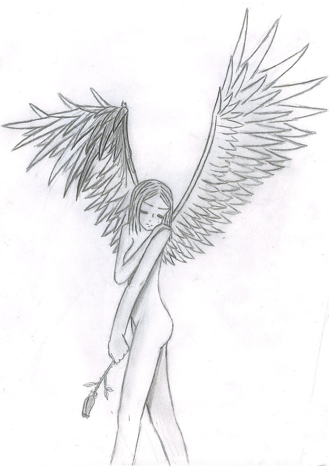 Broken Hearts With Wings Drawings