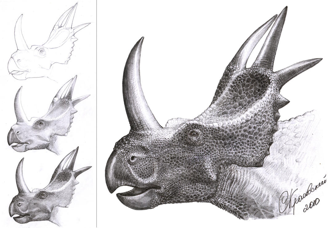 rubeosaurus_ovatus_by_atrox1-d32rg9d.jpg