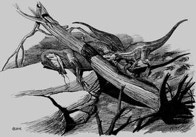 neovenator died by atrox1