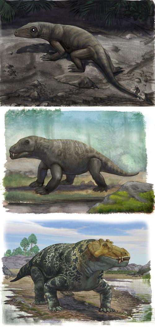 Permian reptiles