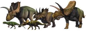 Ceratopsia by atrox1