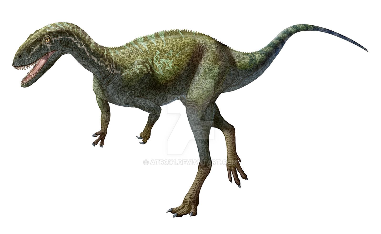 Elaphrosaurus  bambergi by atrox1