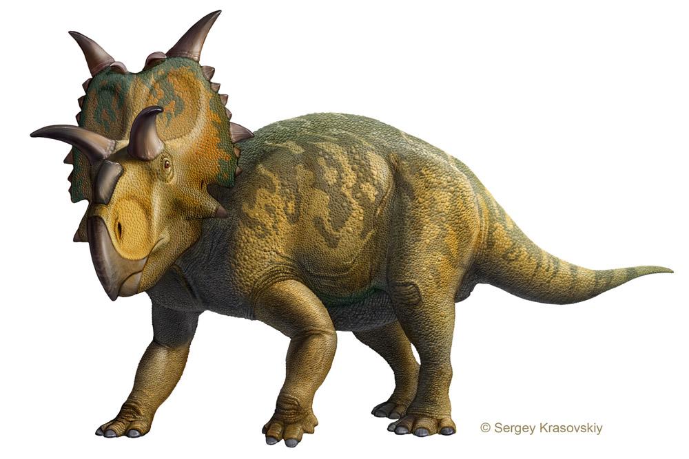 Xenoceratops by atrox1