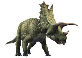 Pentaceratops sternbergii by atrox1
