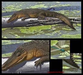Susisuchus anatoceps by atrox1