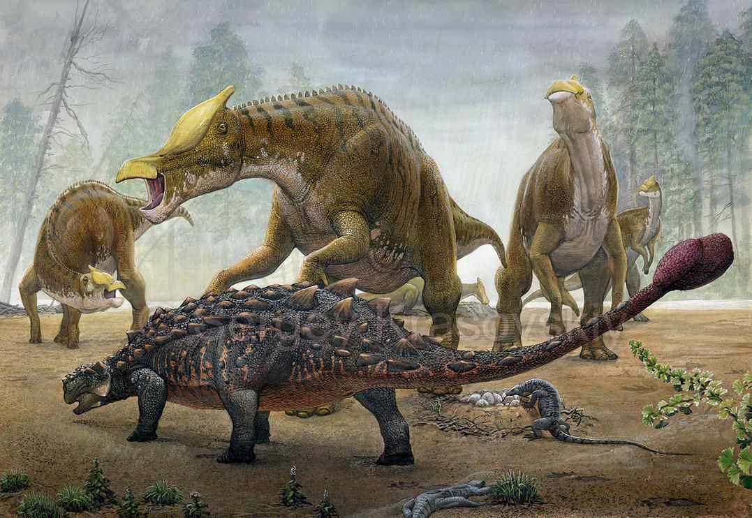 Tarchia Vs  Saurolophus by atrox1
