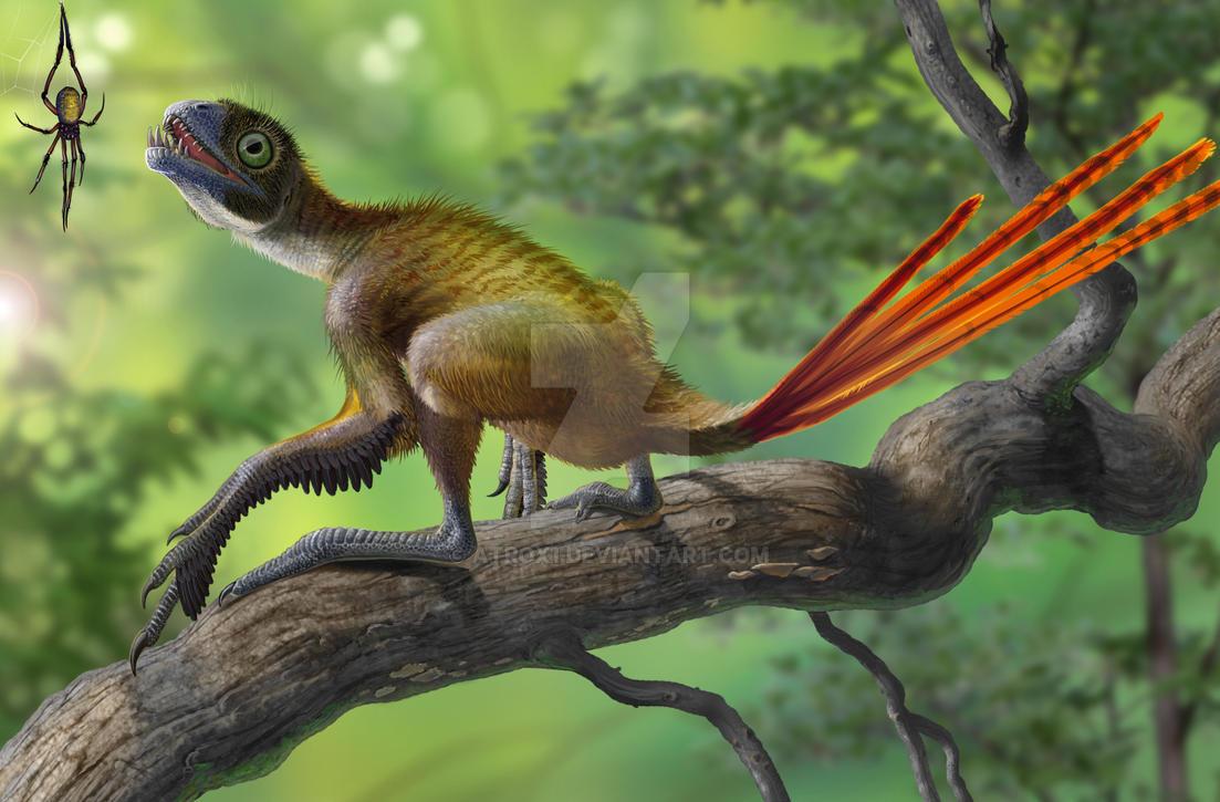 Epidexipteryx hui vs Nephila jurassica by atrox1