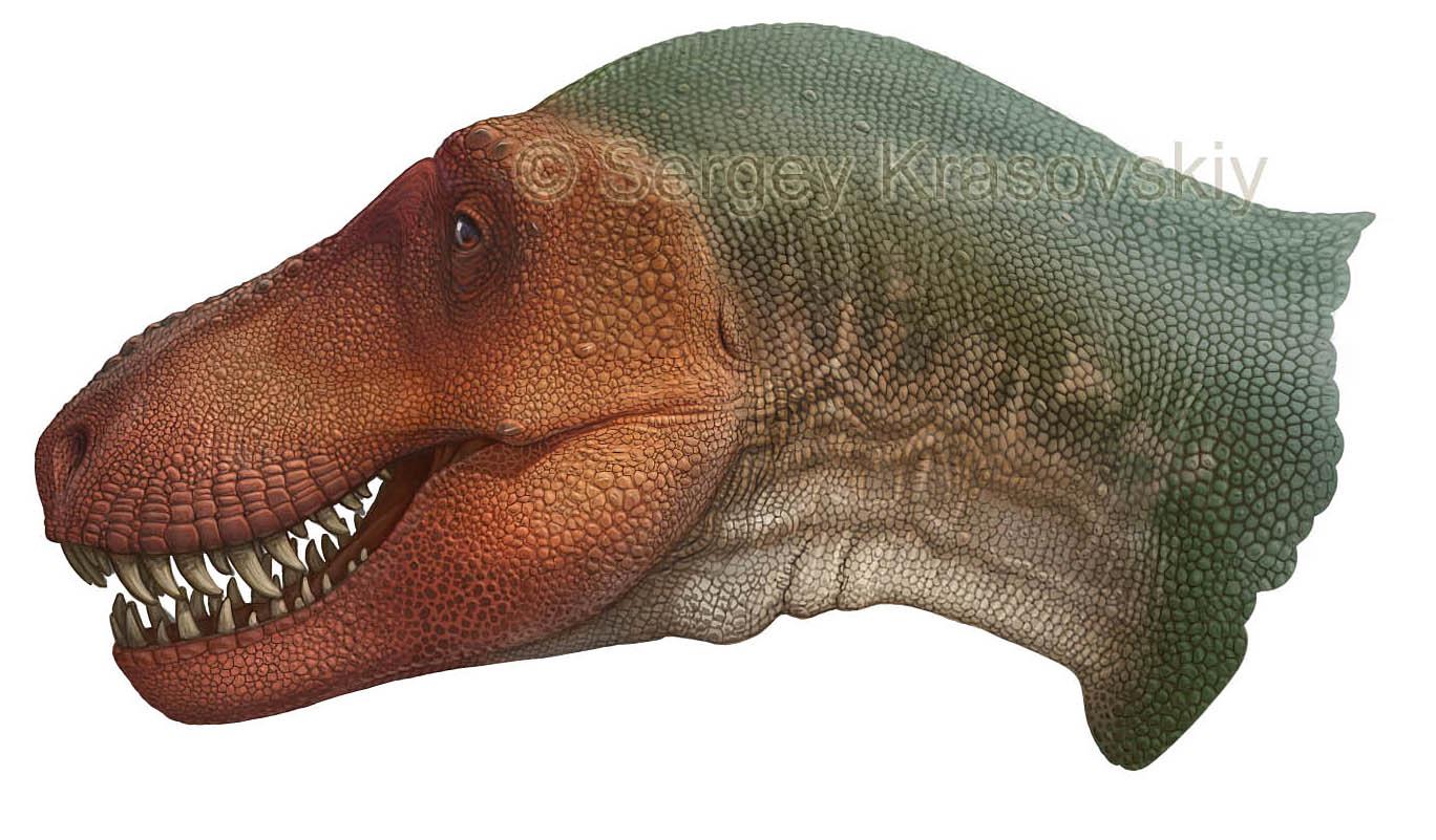 T-rex - Stan - BHI 3033 by atrox1