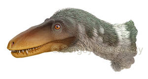 T-rex LACM 238471 (Jordan Theropod)