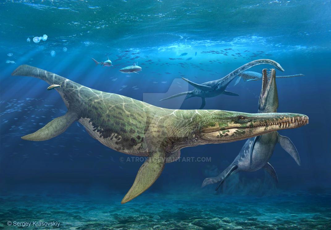 Kronosaurus queenslandicus by atrox1