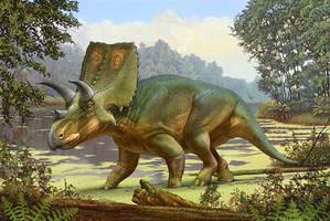 Sierraceratops turneri