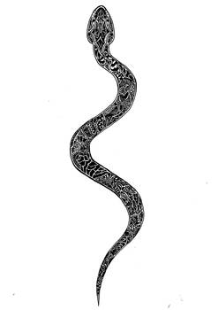 Abstract Snake