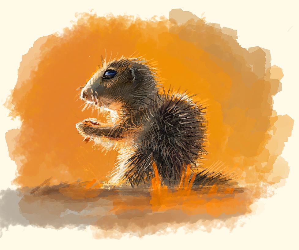ground squirrel by gagatun