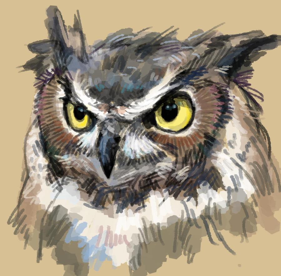 Owl by gagatun