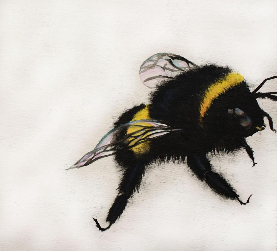 Sweet Little Bumble Bee by InLoveWithThePhantom on DeviantArt