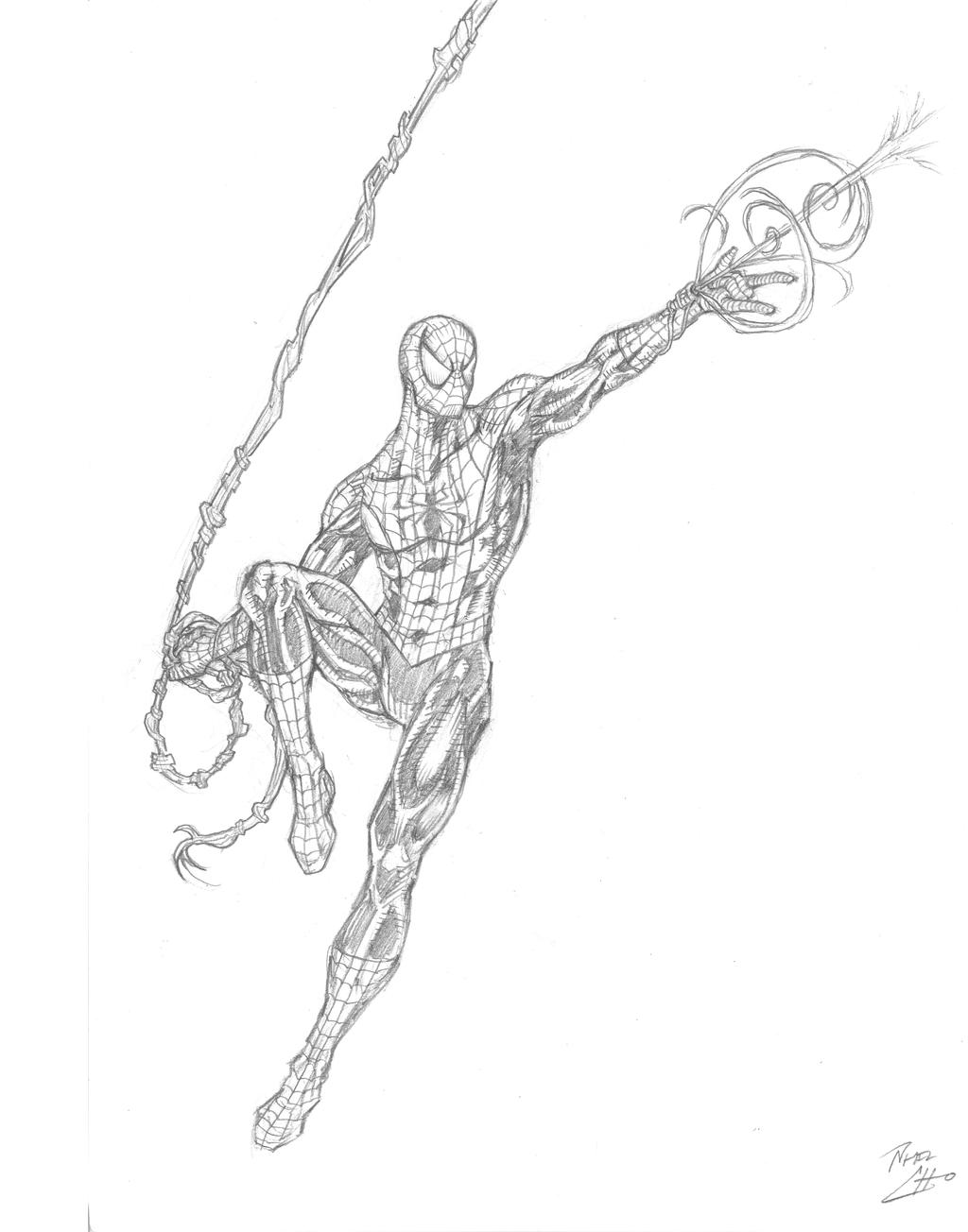 Uncategorized Drawings Of Spiderman bcc 2013 spider man drawing by phil cho on deviantart cho