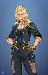 Black Canary (E-27: Enhanced) commission