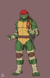 Raphael (Earth-27) commission