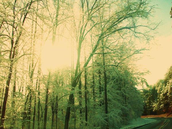 Sunny Snow by mymagicaltutu