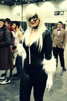 Black Cat the Third by Inuyomi