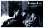 Goodbye Love - Mediagambit