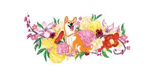 Hatchi by Lelpel