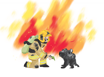fire level catastrophic