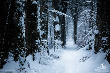 Cold Path by BSGuyIncognito
