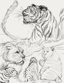 sketches 0.0