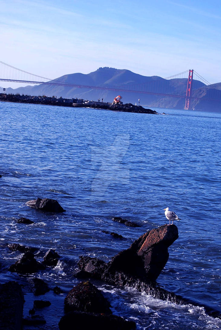 The Golden Gate Guardian by Rock-n-RollJunkie